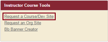 Select the first link in the Instructor Course Tools module