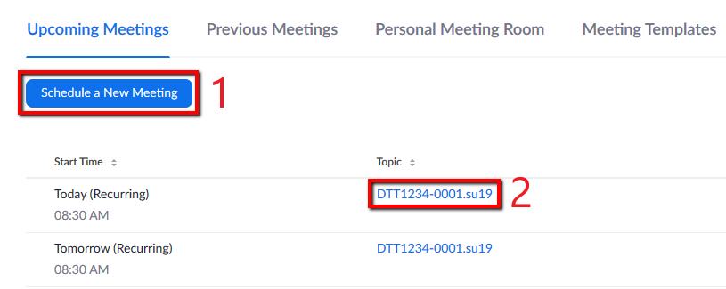 Locations of 'Schedule New Meeting' button and an example of an already established Meeting link.