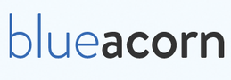 Blueacorn support Logo