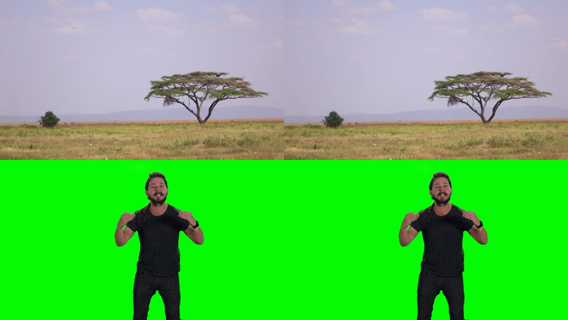 Quad green screen