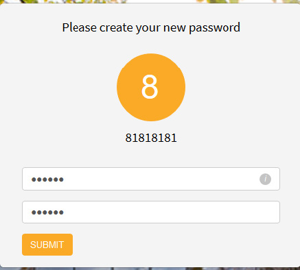 type your new password twice and hit submit